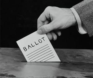 voteDavidRoberts-300x251